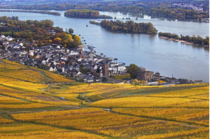 Rudesheim, Rhine Valley