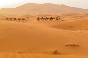 Africa, Arabia & Indian Ocean cruises - Merzouga, Morocco