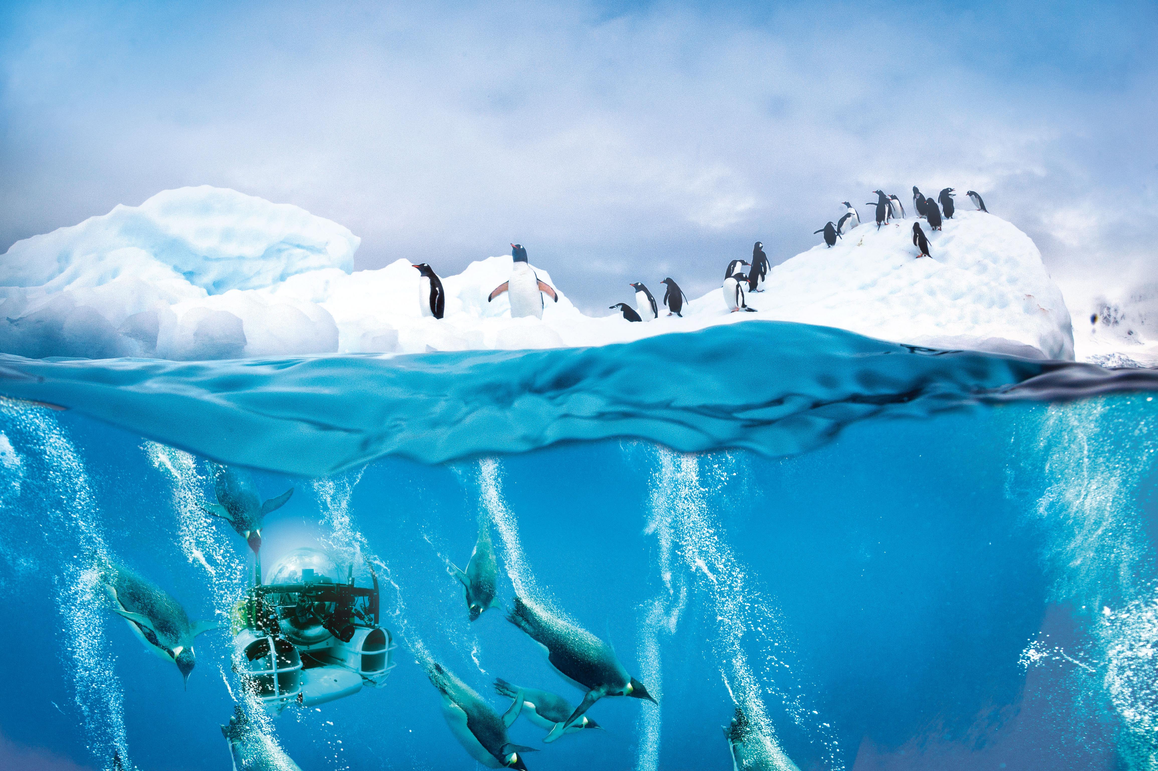 Scenic Eclipse submarine in Antarctica