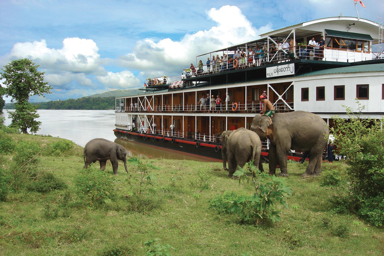 Pandaw II and elephants