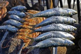 Sardines cooking on a skewer, El Palo, Málaga