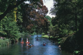Avon River, Christchurch Botanic Gardens
