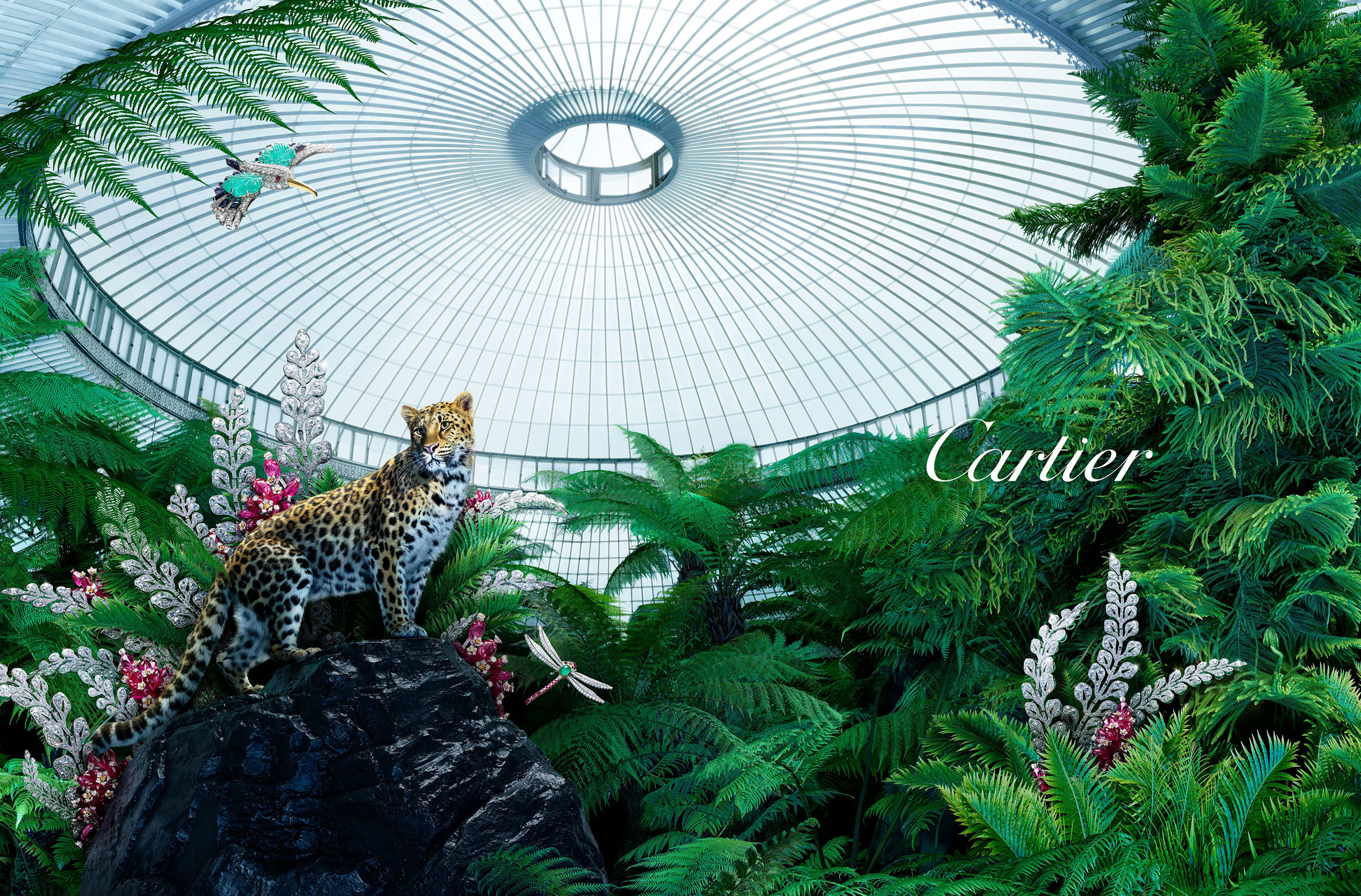 Cartier Bestiaire by Nadav Kander
