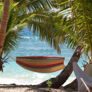 Picture of a Beach Hammock at Moody's