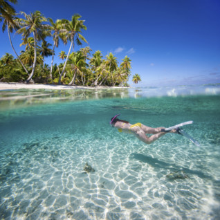 Snorkelling in tropical waters