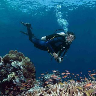 Diver, Borneo, Malaysia