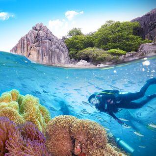 Diver in Thailand
