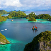 tiger blue raja ampat