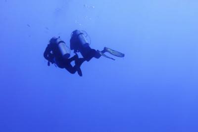 Two divers swimming
