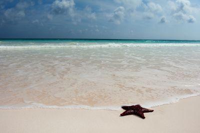Harbour Island Beach, Bahamas