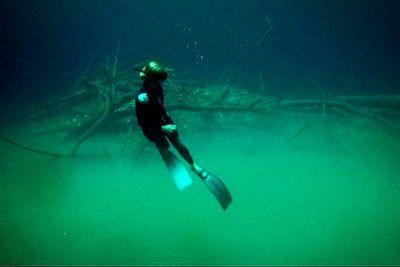 Freediving Cenote Angelita Tulum