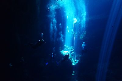 Diving The Pit Cenote in Mexico