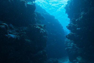 Xlendi Cave & Reef, Xlendi Bay