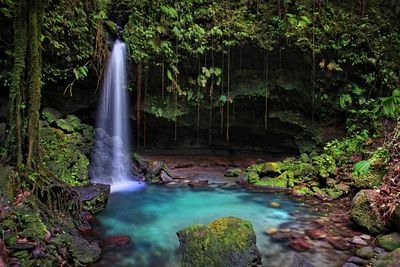 waterfall in dominica