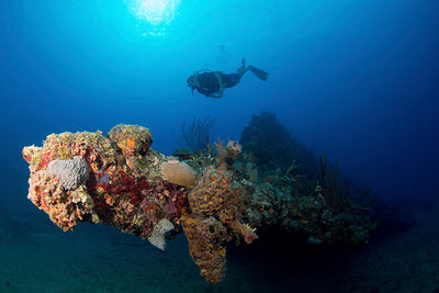 wreck diving in the British Virgin Islands