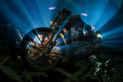 Motorcycle, Thistlegorm Wreck, Red Sea