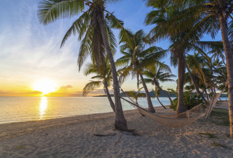 Fiji Hammock at Sunset