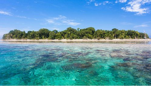 Turquoise Ocean, Sipadan