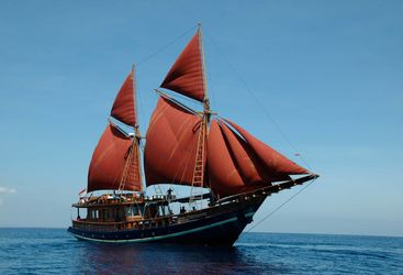 Picture of the Tiger Blue in full sail