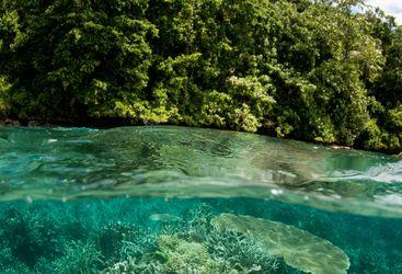 Picture of Tawali Resort Milne Bay