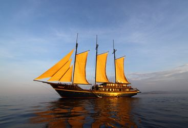 Picture of the M S/V WAOW Sailing