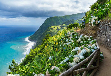 Coastal Path with Hydrangeas