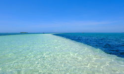 Clear water of Bohol, Philippines