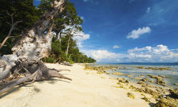 Beach on the Andaman Islands