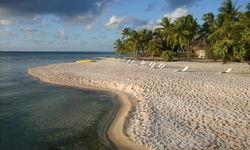 Picture of Sandy Beach in Tikehau