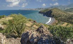 Baja California Coastline