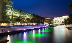 Cayman by night