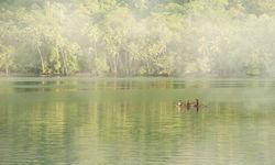 Canoe at Milne Bay, PNG