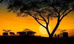 Tanzania at sunset