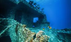 A wreck dive