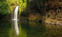 Wanibau Waterfall, Vanua Levu