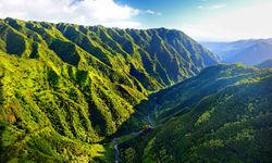 Hawaii Green Scenery