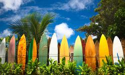 Hawaii Surfboards