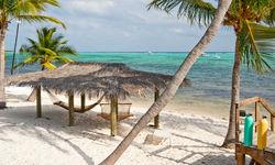 Beach Hammocks and palm trees