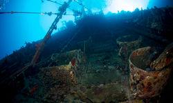 taiyo tuna fishing boat wreck