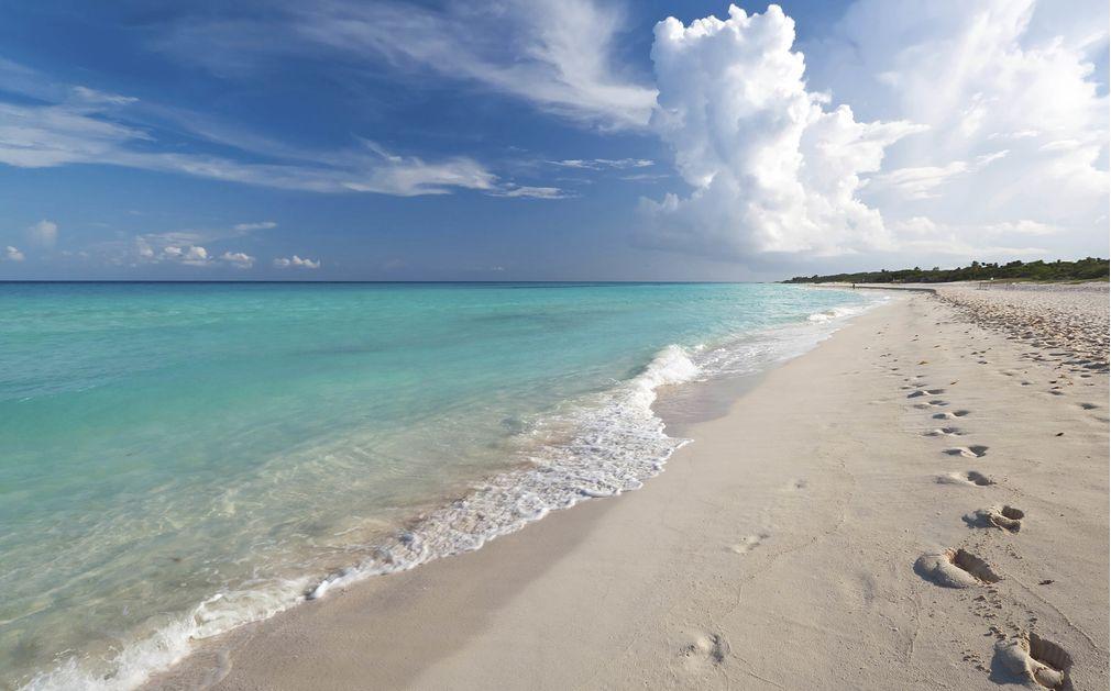 Beach Hotel In Merida Yucatan
