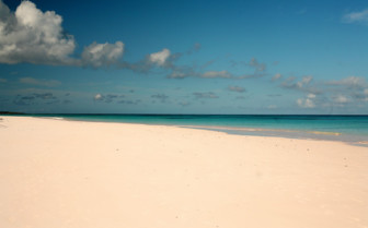 Picture of the beach at Pink Sands Resort