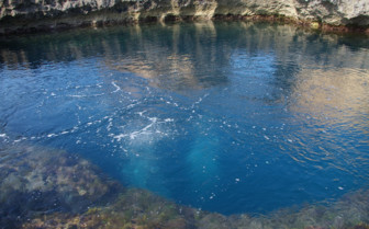 Picture of diving on the Gozo coast