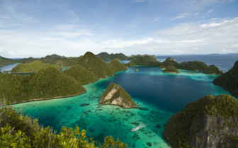 Picture of Arenui Liveaboard in Raja Ampat