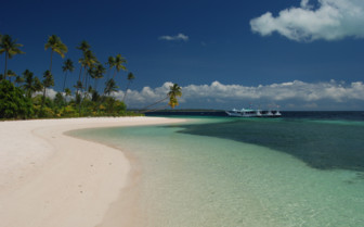 Picture of the beach at Wakatobi Dive Resort