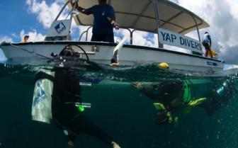 Picture of diving at Manta Ray Bay