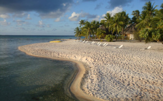Picture of Sandy Beach in Tikehau