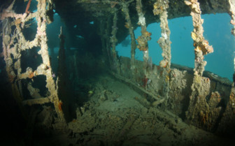 Picture of Wreck diving Sangat