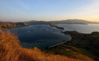 Picture of Komodo landscape