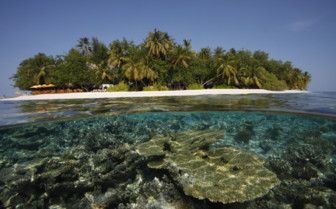Picture of Angsana Ihuru house reef