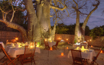 Evening dining under Baobab trees in Mozambique